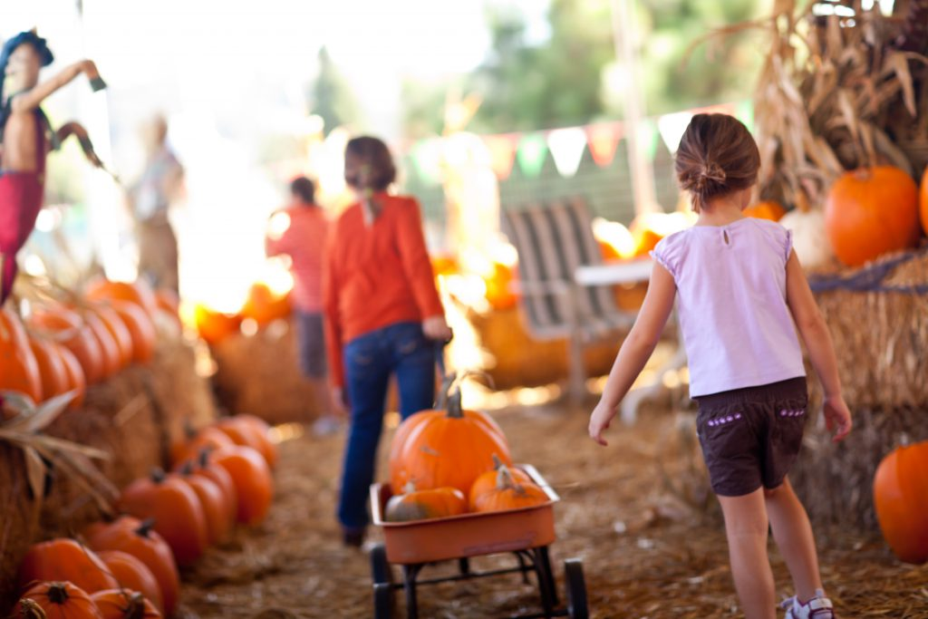 October is Filled with Family-Friendly Events in North Myrtle Beach